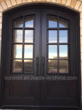 Wrought Iron Secrity Doors Popular in Arizona