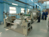 PP/PS/PE Sheet Extruding Machine (TJS-670)