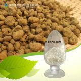 Tetrahydropalmatine Corydalis Yanhusuo Extract Corydalis Yanhusuo P. E.