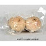 High Qualityb Black Garlic for Sale