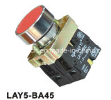 Flush Spring Return Pushbutton Switch