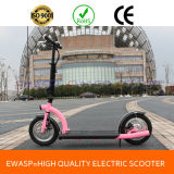 Made in China Supplier Foldable Electric Scooter