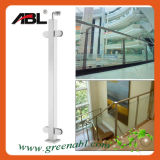Handrail Outdoor Stair/Handrail for Outdoor Step (DD003)