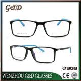 Fashion Popular Design Tr90 Glasses Optical Frame Eyeglass Eyewear T6002