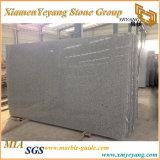 G602 Bianco Crystalwhite Granite Polished Slab for Countertop, Tiles, Paving Stone (YY-MS197)