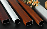 Stainless Steel Pipes for Decorative Tube or Heat Exchanger Tube