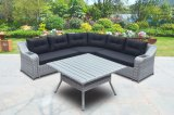 Polywood Table Loungest Sofa Outdoor Patio Wicker Garden Rattan Sofa Set (J610-POL)