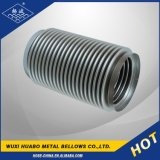 Stainless Steel Bellow Hose Fittings/Accessories