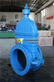DIN3202 F4 Ductile Iron Gate Valve with Bypass (Z45X-10/16)