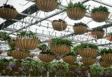Chinese Hot Sale High Quantity Creative Modern Metal Flower Hanging Basket (manufacturer)