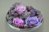 Small Round Box 3-in-1 Preserved Fresh Flower