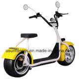 New Design Fat Tire Electric Scooter Motorcycle with Ce