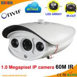 Weatherproof LED Array IR 1.0 Megapxiel IP Web Cam