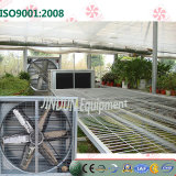 Axial Flow Type Ventilation Cooling Exhaust Fan for Greenhouse, Poultry House