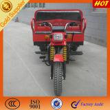 2015 China Supplier Passenger Seat 3 Wheels Cargo Trike