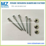 Galvanised Round Spiral Shank Roofing Nail with Washer