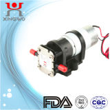 Gear Pumps Water Pump Electric DC Motor (CP001B1)