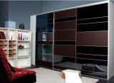 Modern Style Wardrobe Sliding Door (PY-A5-BHC-001)
