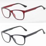 Popular Wholesale Tr90 Eyewear Eyeglass Optical Glasses Frame