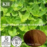 Feed Additives Origanum Vulgare Extract/Oregano Extract, Oregano Oil