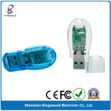 Transparent Plastic USB Flash Disk with Brand Chips