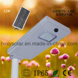 Integrated Garden Lighting All-in-One Solar Street Light 12W