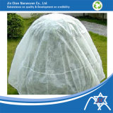 PP Nonwoven Plant Cover