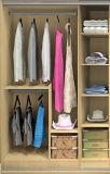 Modular Wardrobe for Modern Style Bedroom Furniture (Br-16-C)