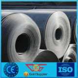 HDPE Liner for Landfill Construction and Water Proof