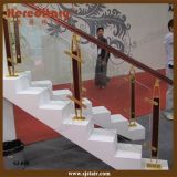 Indoor Aluminum and Wood Glass Balustrade for House Staircases (SJ-040)