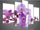 Framed Purple Flower Oil Painting on Canvas for Home Decoraration (FL4-095)