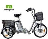 Elder Rider Cargo Three Wheel 250W Electric Tricycle