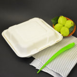 Pulp Molded Biodegradable Lunch Box Container