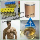 Building Powder Steroid Clostebol Acetate for Muscle Growth and Bodybuilding