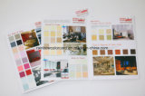 Wall Paint Color Shade Card Brochure for Building Material