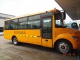 21-40 Seats Luxury Bus School Bus Slk6800