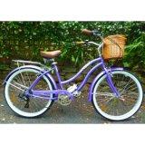 Customized Colorful Beach Bike (ZL-BC-003)