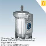 Mini Electric Submersible Hydraulic Fuel Gear Pump (CBT-F430)