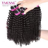 Wholesale Brazilian Hair Kinky Curly Human Hair Extension