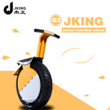 Newest Smart 17 Inch Self-Balancing One Wheel Electric Motorcycle