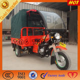 Ducar Hot Selling 200cc Three Wheel Cargo Motorcycles
