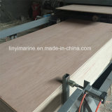 Bintangor Face and Back Poplar Core BB/CC Grade Commercial Plywood