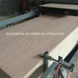 Bintangor Face and Back Poplar Core BB/CC Grade Commercial Plywood