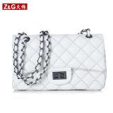 Fashion Leather Bag Ladies Handbag (LDB-027)