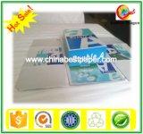 75g A4 Copy Printing Paper-Print Document