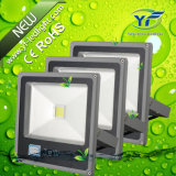 10W 20W 50W LED Lighting Floodlight