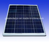 Professionl Manufacture 80W Poly Solar Panel with Favorable Manufacture in China