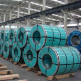 304 Stainless Steel Coil in China Supplier