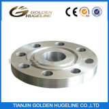 Flanges (Forged DIN Standard Slip on Flanges)
