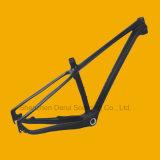 Bike Frame, Bicycle Frame for Sale Tim-Mt22